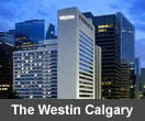 Calgary Hotels Local Guide To Hotels In Calgary Alberta